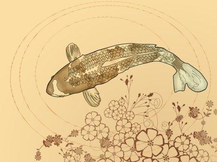 koi_carp_by_tisato